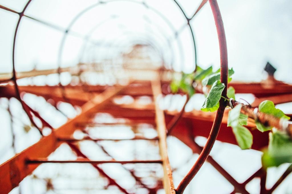 Arbeitsschutz Arbeiten Auf Leitern