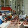 Auswirkungen schlechter Arbeitsbedingungen auf die Arbeitssicherheit